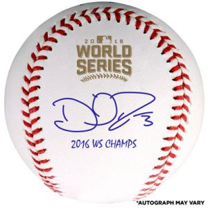 David Ross Chicago Cubs Fanatics Authentic 2016 MLB World Series Champions Autographed World Series Logo Baseball with 2016 WS Champs Inscription